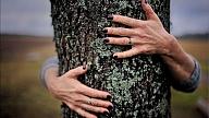 Koku enerģija: Atmodini sevi dabā!