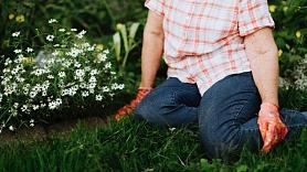 Kā veikt dārza darbus, nekaitējot veselībai? Iesaka speciālisti