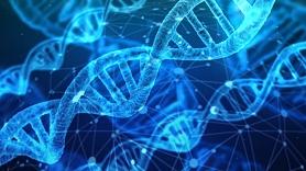 Par trombofīlijas ģenētisko testēšanu