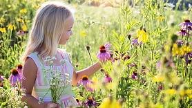 Putekšņu alerģija – arī vasaras problēma: Kā sevi pasargāt?