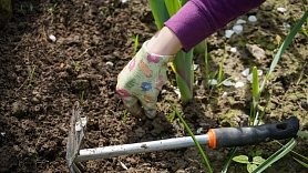 Treneris: Dārza darbi ir pielīdzināmi kārtīgam treniņam