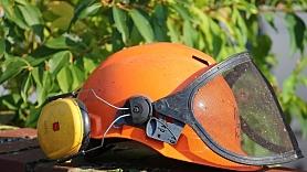Apdrošinātājs:Tipiskas traumas dārzā cilvēki gūst, zāģējot un pļaujot