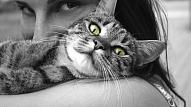 6 veidi, kādos tavs mājdzīvnieks uzlabo tavu veselību