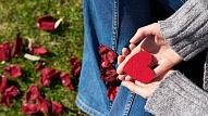 10 slikti paradumi, kas kaitē tavas sirds veselībai