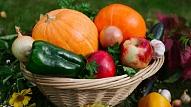 5 dabas veltes, ko ieteicams iekļaut rudens ēdienkartē