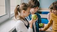 5 padomi, kā parūpēties par bērna veselību un labsajūtu, sākoties skolas gaitām