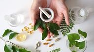 Ārstniecības augi klepus ārstēšanai un imunitātei: Kā tos pareizi lietot?