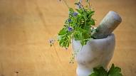 Ārstniecības augi, ko vērts iekļaut mājas aptieciņā