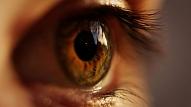 Cik nozīmīga ir perifērā redze un kā to vingrināt? Stāsta optometriste