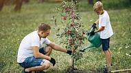 Kā un vai vajadzētu iesaistīt bērnu dārza darbos? Stāsta psiholoģe
