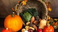 Kāpēc sakņaugu iekļaušana uzturā ir tik svarīga? Skaidro uztura speciāliste
