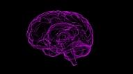 8 simptomi, kas var liecināt par smadzeņu audzēju