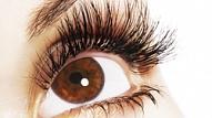 Dr. Ilze Šveiduka: acs radzenes transplantācija Latvijas Amerikas acu centrā