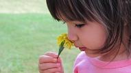Bieži sastopami alerģiju cēloņi - ieelpotais, apēstais un kontaktvielas