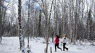 Sportošana ziemā: Fitnesa trenera ieteikumi treniņiem brīvā dabā