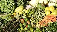 Tirgotāji: Pēdējā gada laikā Latvijā aug pieprasījums pēc vegānu un veģetāriešu pārtikas produktiem