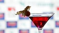 Vāc parakstus, lai aizliegtu alkoholisko dzērienu reklāmu medijos un interneta vidē