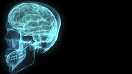 Vai tiešām mēs izmantojam tikai 10% smadzeņu? Smadzeņu darbības principus skaidro speciāliste