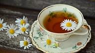 Ārstniecības augu tējas organisma attīrīšanai un mundrumam
